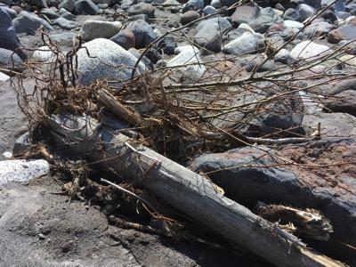 Rocks and debris alongn the glacier valley bottom